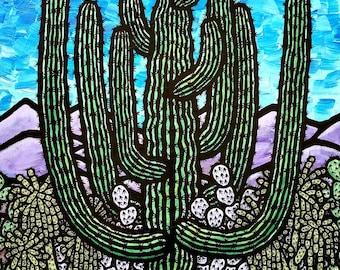 Evening Sonoran Desert Landscape
