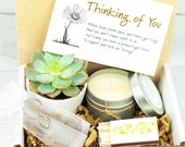 CARE PACKAGE. Thinking of you. Healing Vibes. Gift Box. Succulent Gift Box. Live Succulent. Succulent and Candle. Succulent Care Package.