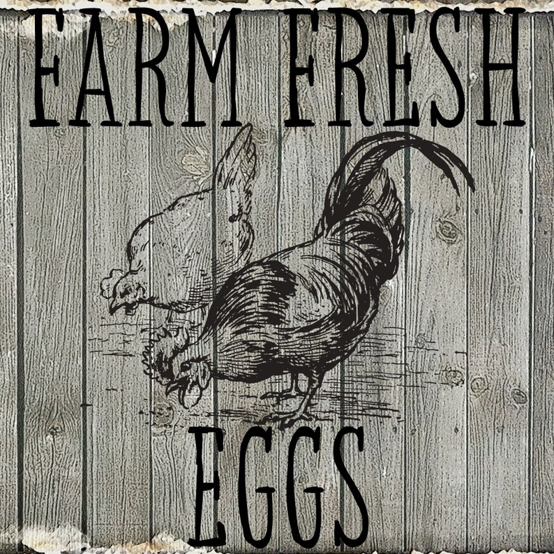 png svg eps and dxf cricut silhouette stencil or transfer Printable Farm Fresh Eggs for decorative sign