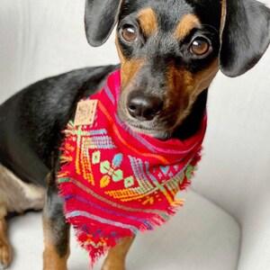 Supreme over the collar Thicc Dog Bandana