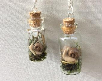 botanical necklace glass terrarium necklace real moss Resin bottle necklace Terrarium bottle necklace