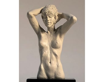 Anne's Coiffure, is part of the Series of Anne, It is a small decorative nude figure, in solitude, with a smooth porcelain-like texture.