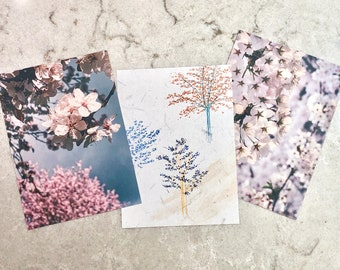 Sakura Postcard Set • Vancouver and Japan Photos and Pen Drawings • 5x7 Prints