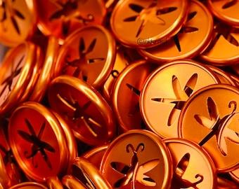 Pumpkin Spice Metal Planner Discs