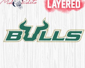WinCraft NCAA South Florida Bulls Premium Retractable Badge Holder One Size Team Color
