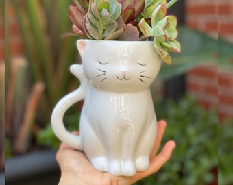 Standing Cat Planter Pot for Succulents & Plants | Succulent Planter | Animal Planter | Smiling Planter | Housewarming Gift | Christmas Gift