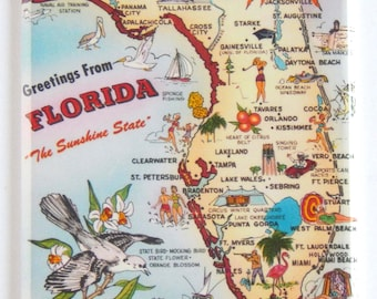 "Petersburg Florida FRIDGE MAGNET travel souvenir /""style C/"" Greetings from St"