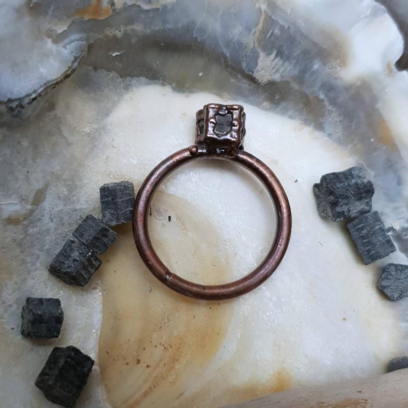 Real /'Star Stone/' Fossilised Crinoid Stem Columnal Ring UK Size N 12