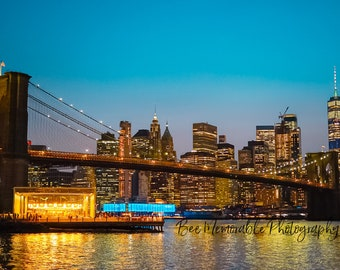 Manhattan Skyline at Night Photograph Print