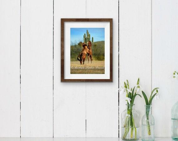Desert Wild Horse Print