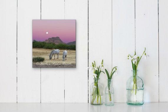 Wild Horse Sunset Print