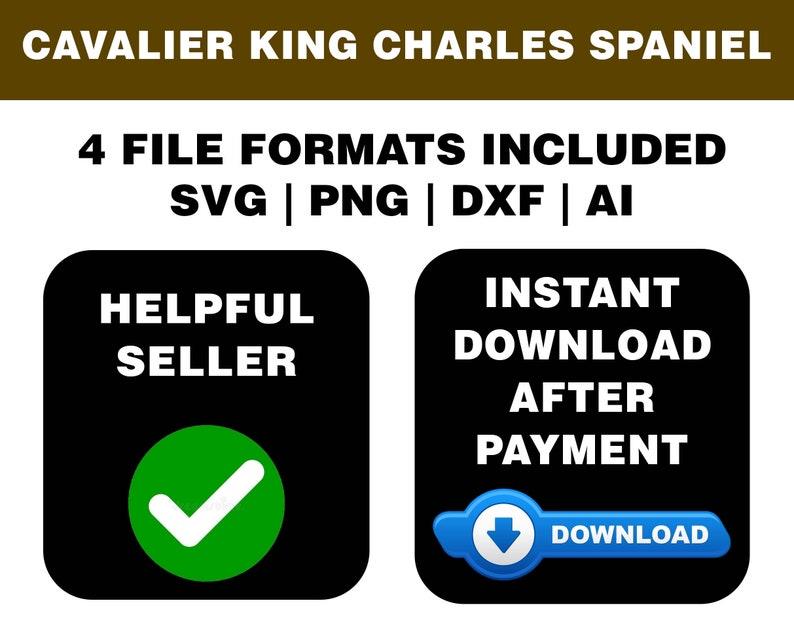 Digital Download 8 Designs Cavalier King Charles Spaniel Dog Silhouette Pack Cavalier King Charles Cavalier King Charles Spaniel SVG