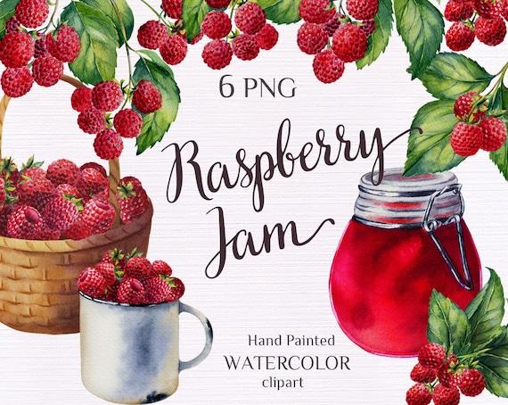 Raspberry botanical illustration Raspberry clipart Watercolor Raspberry clipart Botanical Clipart PNG 105