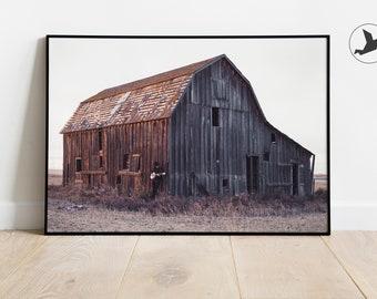 set of 3 prints 8x10 rustic wall decor 20x24 barn art set 11x14 canvas set 16x20 country photo green Farm Photography Set Sunny Skies