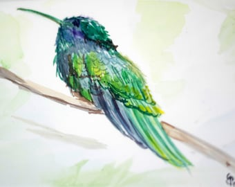 Colorful birds, Rainbow birds, Watercolors,  bird collections,  large and small prints