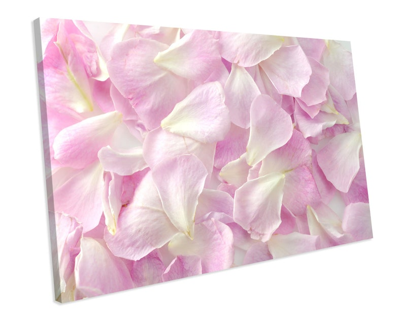 Petals Floral CANVAS ART PRINT Box Framed Picture Home Decor