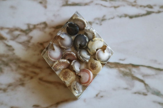Flat Diamond - Filled with Sea Shells in Clear - Made in Resin