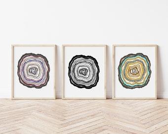 Set of 3 Prints, Tree Rings Prints, Tree Ring Art, Watercolour Tree Ring Paintings, Triptych Art Set, Wall Art, Gallery Wall Art, Nature Art