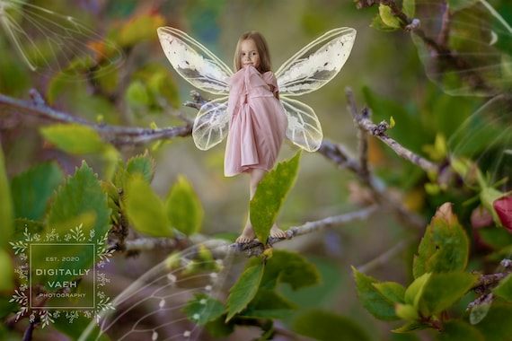 Magical Spring Pixie Backdrop. Baby Chick Fairy Digital Background