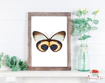 Framed Art Print Love Male /& Female Diana Butterflies Couple Lepidoptera Pair Watercolour Giclee Print Decor Wall Art