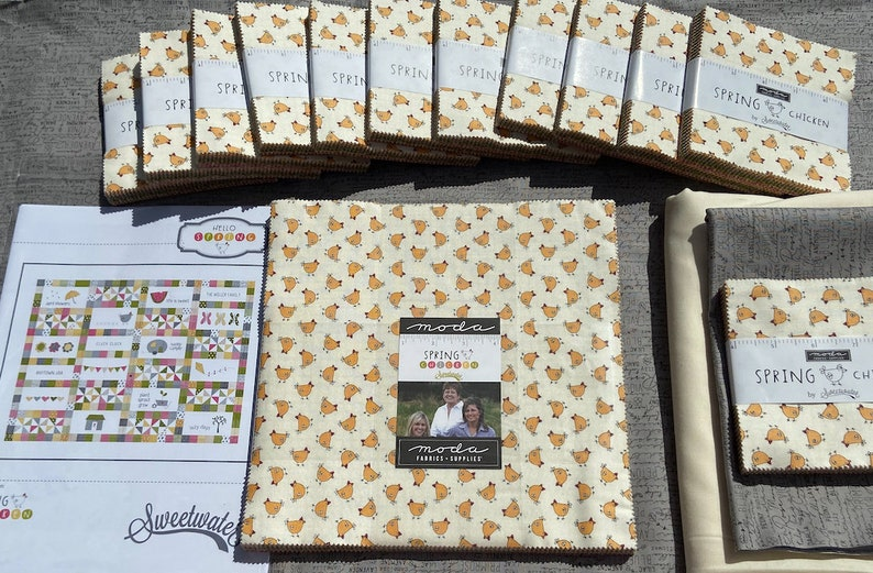 Spring Chicken Quilt kit by SWEETWATER for Moda Fabrics image 0
