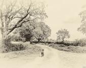 Vintage Black Dog Lane. Vintage Style Photo. Instant Digital Download in Five Sizes. Dog Walking along a Country Lane