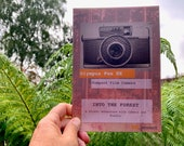 Zine. INTO THE FOREST - A Forest Adventure with Camera and Poodle. 24 Page Zine in A5 - 8.3 x 5.8 inches. Limited Edition. Olympus Pen