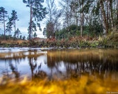 Forest Pool in Winter. A Golden Pool taken at Water Level Part of the Aqua Collection. Digital Download in Four Sizes.