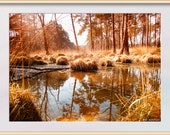 Brown Forest Pool Photo. Instant Digital Download in Four Sizes. Swinley Forest Bracknell Berkshire, England.