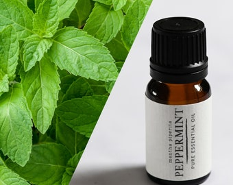 Peppermint essential oil UK. Therapeutic grade aromatherapy peppermint oil in 10ml bottle.
