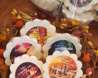 FALL DEAL Autumn Scented Natural Wax Tarts No-Stick Natural Wax Melts. Bag of 9 Heavily scented long lasting 24-36 hour fragrance, Assorted