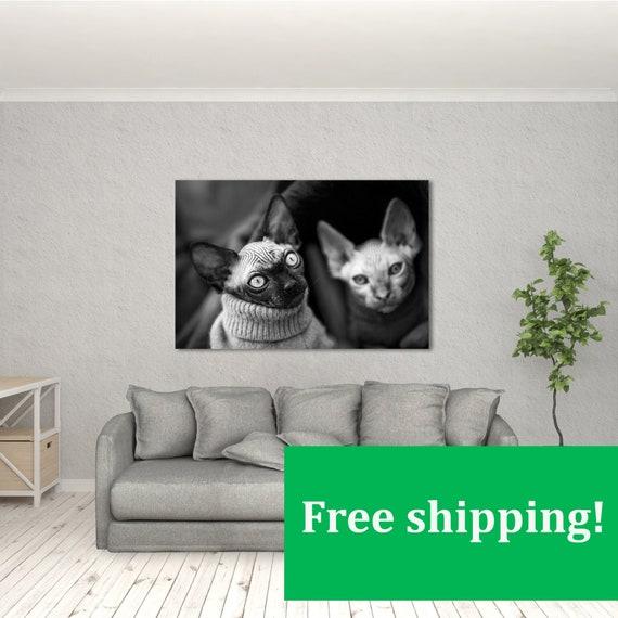 Canadian Hairless White Cat Modern Decor Canvas Wall Art HD Print