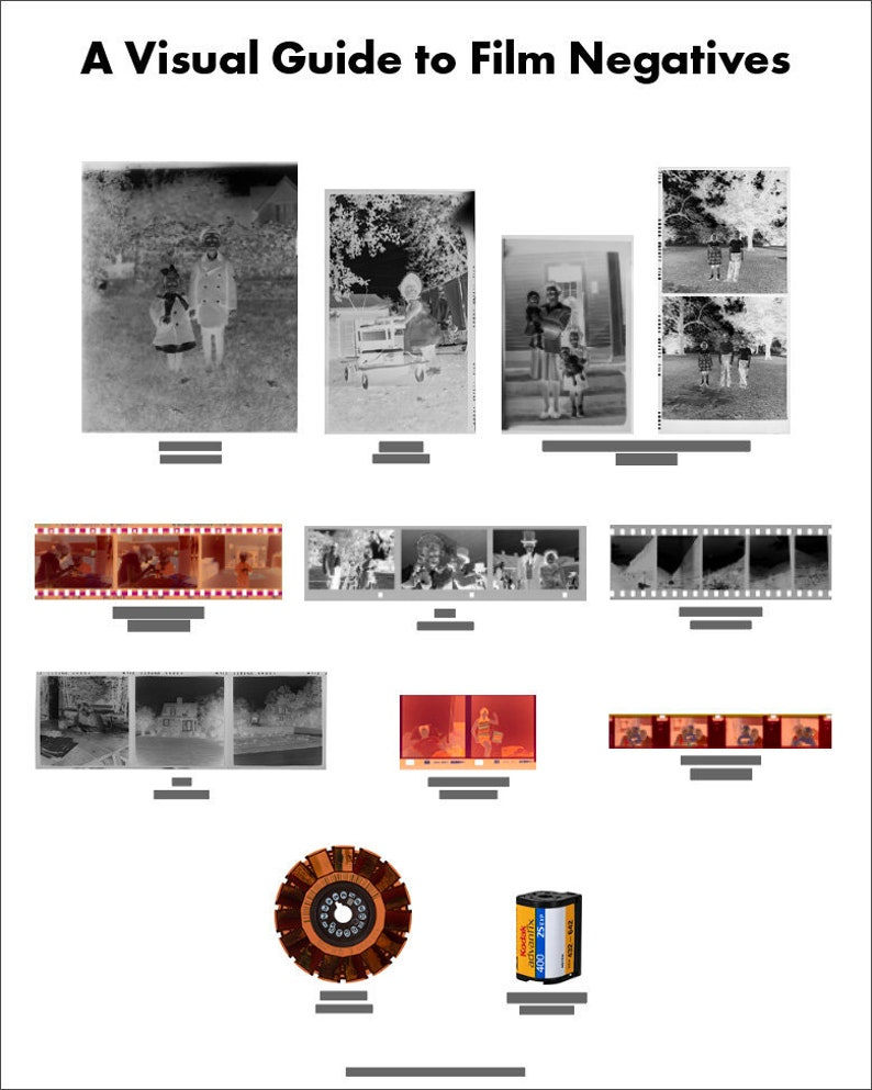 A Visual Guide to Film Negatives image 0