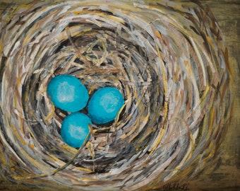Spring Robin's Nest