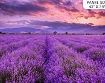 Lavender Fields by Northcott,  PANEL, per panel, 100% Cotton