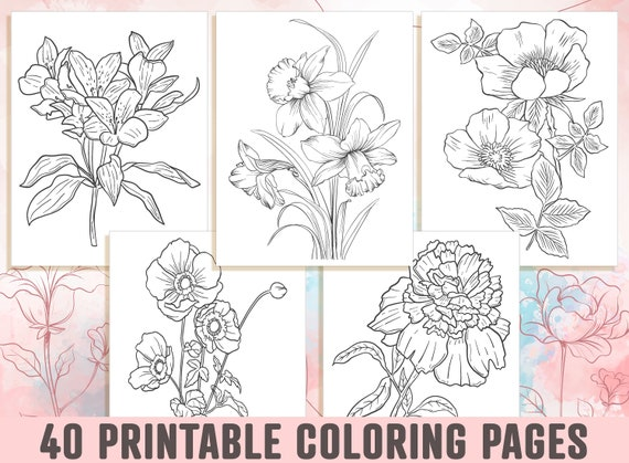 Floral Coloring Pages  40 Beautiful Floral and Flower