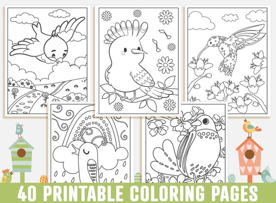 Bird Coloring Pages  40 Printable Bird Coloring Pages for