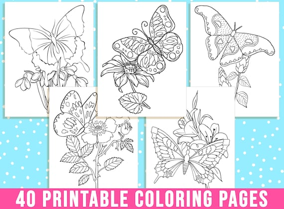 Butterfly Coloring Pages 40 Printable Butterfly and Flower
