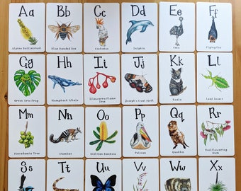 Australian Flora and Fauna Alphabet Flash Cards, Hand Drawn Illustrations with a fun fact to help kids learn about the nature around them!