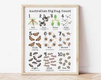 The Australian Big Bug Count! Kids Learning to Counting Resource Poster, Hand Drawn Australian Native Bugs & Insects, Print to A3
