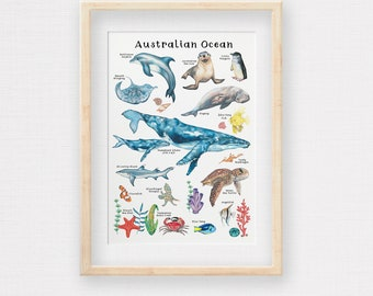 Australian Ocean Poster, Hand-draw Aussie Marine Animals & Plants, Kids Room Print, Nursery Wall Art, Printed to A2, A3 and A4 size