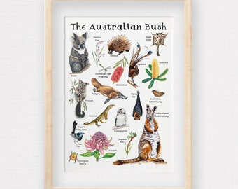 Australian Bush Wildlife Poster, Hand-draw Aussie Animals & Plants, Kids Room Illustrations, Kids Learning Resource, Printed to A2, A3 or A4