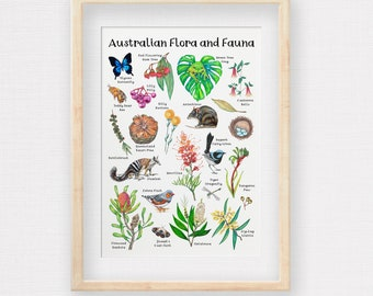 Australian Flora and Fauna Poster, Hand-drawn Aussie Animals & Plants, Botanical Print, Australian Native Flowers, Printed to A2 A3 or A4