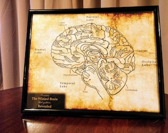 The Wizard Brain and Spell Loci Revealed