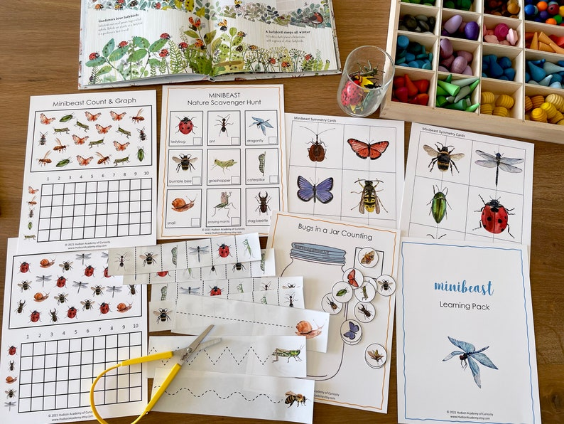 Minibeasts Learning Pack Nature Study Bugs and Insects image 0