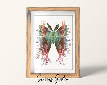 Saturnia divum orbis - Art print