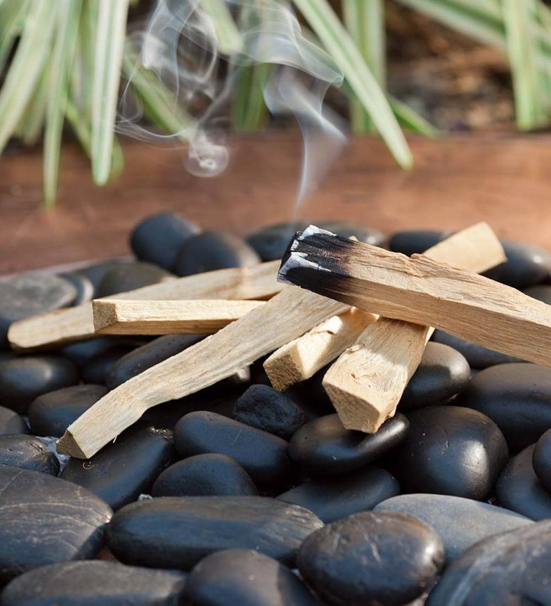 Palo Santo  Sustainable Ethically Sourced Strong Natural image 0