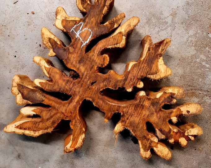 "Brasiletta wood Approx 14.5""x 12.75""x 2"""