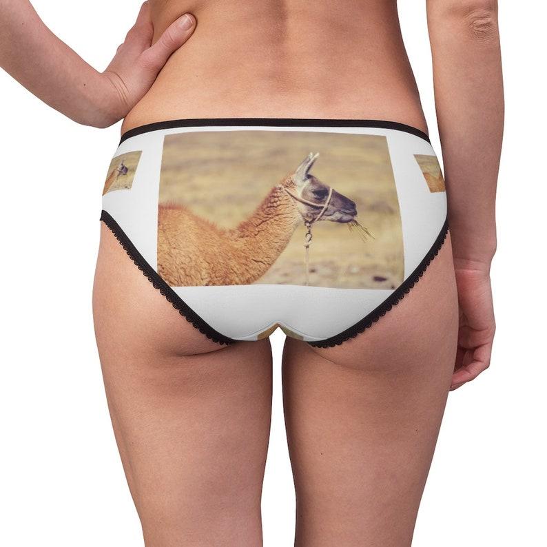 Llama Underwear Cotton Briefs Llama  Panties Panties For Women Funny Underwear Briefs