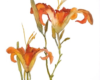 Day Lilies 5x7 Card